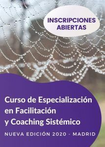 Curso Especialista en Coaching Sistemico en Madrid - 2020 - AINP